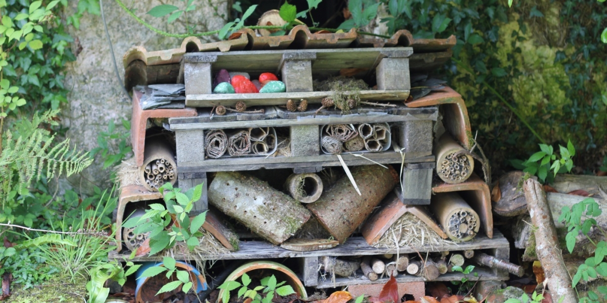 Creating Simple Habitats For Garden Wildlife