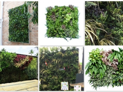 Living Wall Collage2