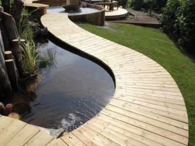 Teign trees blog for Fish pond surgery center