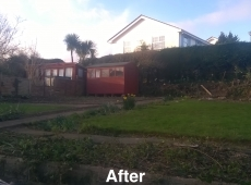 Hedge Removal Clearance After