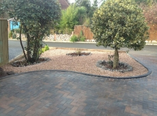 Paved Driveway Gravel Planting